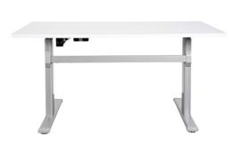 Schreibtisch mit elektrischer Höhenverstellung ergonomisch Sitz- Stehtisch Bürotisch Arbeitstisch (120 x 80 cm, Lichtgrau) -